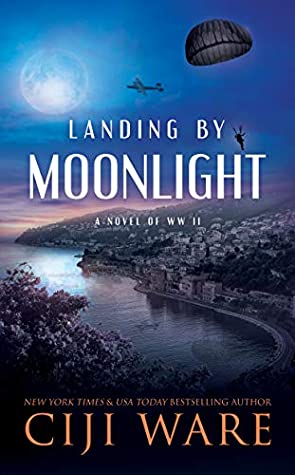 Landing by Moonlight by Ciji Ware