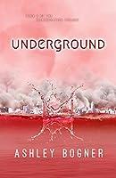Underground (Reintegration Book 2)