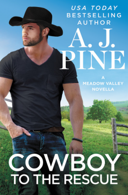 Cowboy to the Rescue (Meadow Valley)