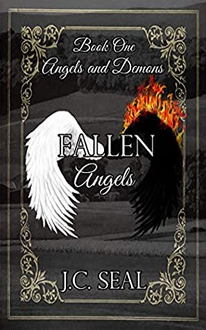 Fallen Angels by J.C. Seal