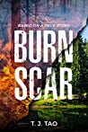 BURN SCAR: A Contemporary Disaster Thriller