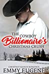 Cowboys Never Get A Second Chance: A Johnson Brothers Novel (Chestnut Ranch Cowboy Billionaire Romance Book 3)