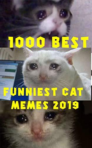1000 Best Funniest Cat Memes 2019 These Cat Memes Clean Cat