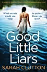 Good Little Liars ebook review