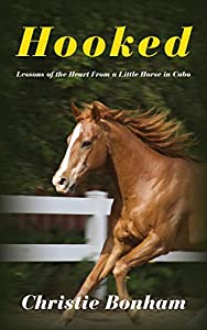 Hooked: Lessons of the Heart From a Little Horse in Cabo