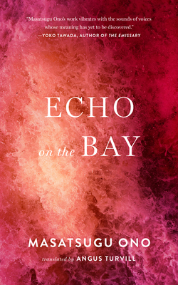 Echo on the Bay cover art with link to Goodreads description page