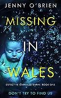 Missing in Wales (Detective Gabriella Darin, #1)
