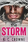 The Storm (Mountain Protectors #1)