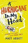 A Hurricane in my Head