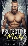 Protecting My Mate (Shifter Mates #2)