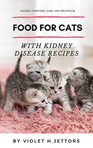 Cats with Kidney Disease Recipes