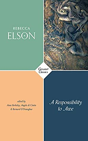 A Responsibility to Awe by Rebecca Elson