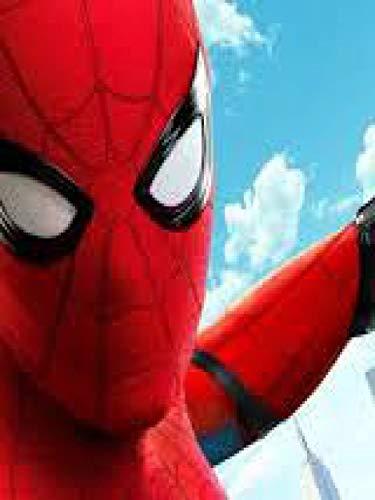 The Full Amazing memes Spiderman Bill Allen