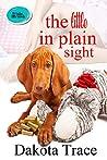 The Little In Plain Sight (The Hidden Little Secrets Book 2)