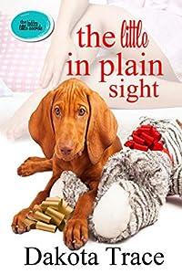 The Little in Plain Sight (The Hidden Little Secrets #2)