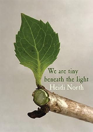 We are tiny beneath the light