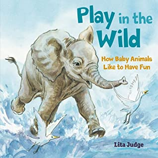 Play in the Wild by Lita Judge