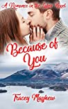 Because of You: A Sweet, Clean Contemporary Romance (Romance In The Lakes Book 2)