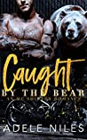 Caught by the Bear