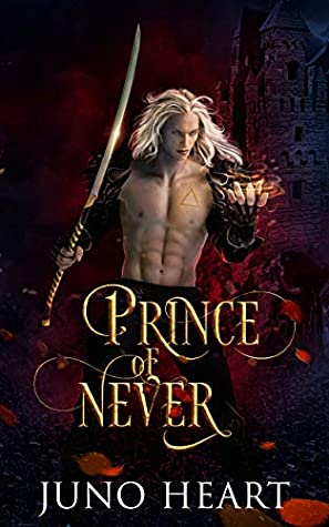Image result for Prince of Never by Juno Heart