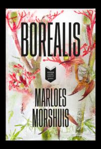 Borealis by