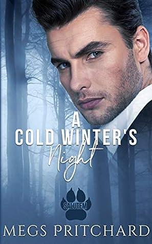 A Cold Winter's Night (Salutem, #3)