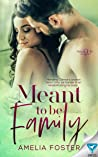 Meant to be Family (Meant To Be #3)