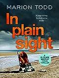 In Plain Sight (Detective Clare Mackay, #2)