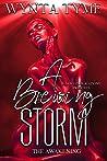 A Brewing Storm 2...