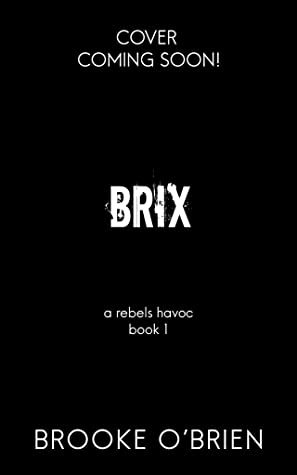 Brix (A Rebels Havoc, #1)