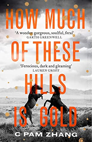 How Much of These Hills Is Gold by C Pam Zhang best books to read this summer 2020