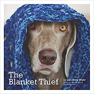 The Blanket Thief by Lori Anne Dryer