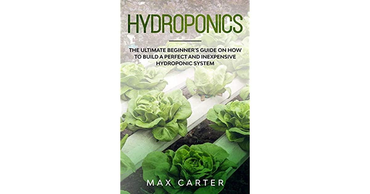 Ultimate Guide For Starting Your Own Hydroponic Garden