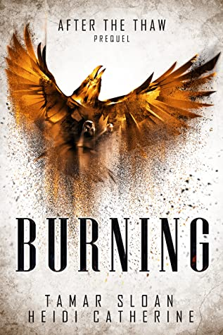 Burning by Tamar Sloan