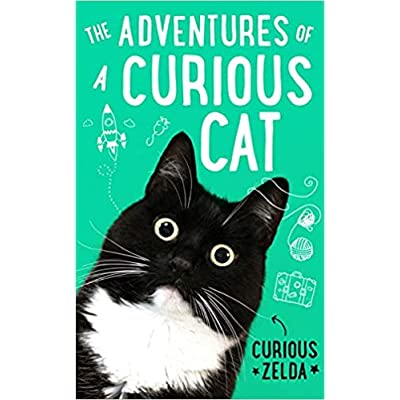 The Adventures Of A Curious Cat By Curious Zelda