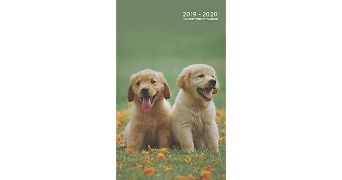 2019 2020 Monthly Pocket Planner Two