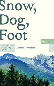 Snow, Dog, Foot