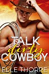 Talk Dirty, Cowboy (Dirty Cowboy, #1)