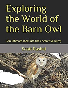 Exploring the World of the Barn Owl: