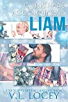 Christmas According to Liam (According to Liam #2)