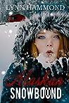 Alaskan Snowbound