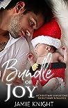 Bundle of Joy: A Christmas Single Dad Secret Baby Romance