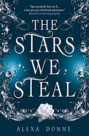 Image result for the stars we steal by alexa donne