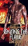 Igniting the Flame (Kiwi Guys Book 3)