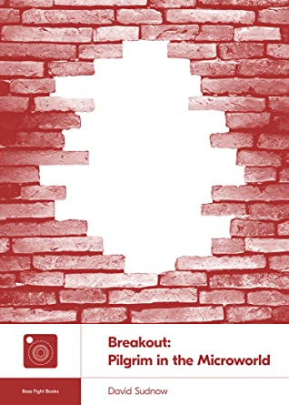 Breakout: Pilgrim in the Microworld (Boss Fight Books, #22)