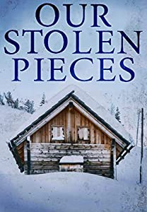 Our Stolen Pieces (North and Martin Abduction Mystery, #1)