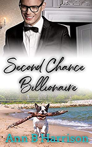 Second Chance Billionaire by Ann B Harrison