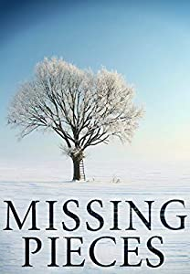 Missing Pieces (North and Martin Abduction Mystery, #2)