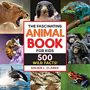 The Fascinating Animal Book for Kids by Ginjer Clarke