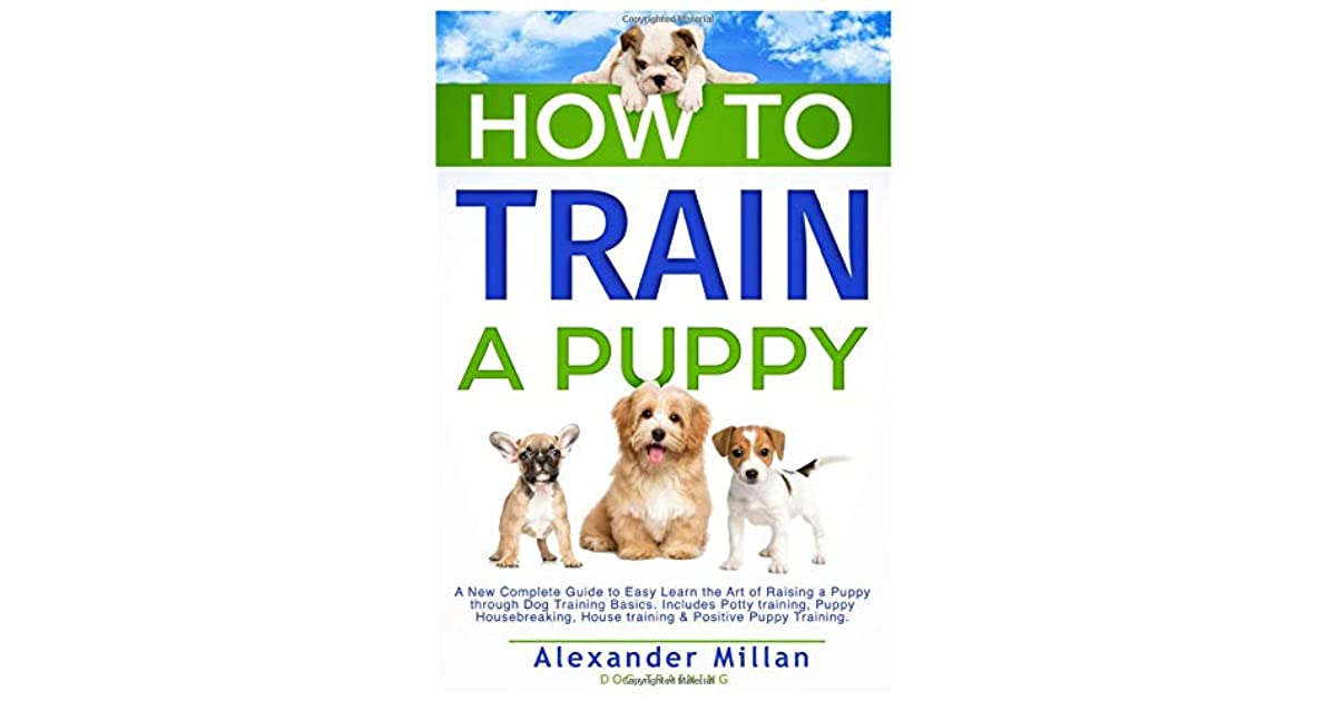 How To Train A Puppy A New Complete Guide To Easy Learn The Art Of Raising A Puppy Through Dog Training Basics Includes Potty Training Puppy Housebreaking House Training Positive Puppy